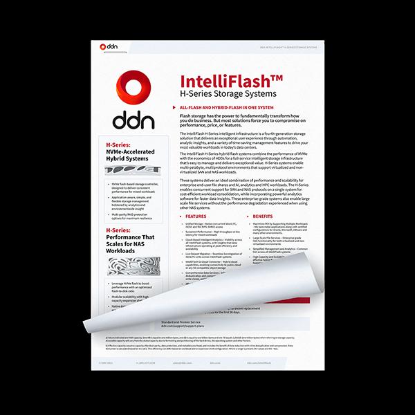 DDN IntelliFlash - Flash Storage